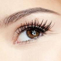 Groothandel schoonheidssalons oogschaduw basis 100% natuurlijke eye primer